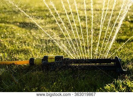 Lawn Sprinkler Spraying Water Over Green Grass. Modern Device Of Irrigation Garden Grass. Irrigation