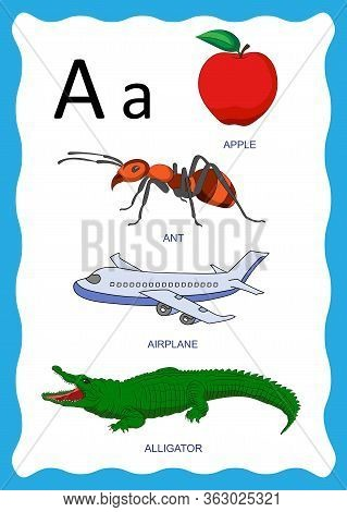 Vector Illustration Of English Alphabet With Pictures Word And Titles For Children Education. Childr