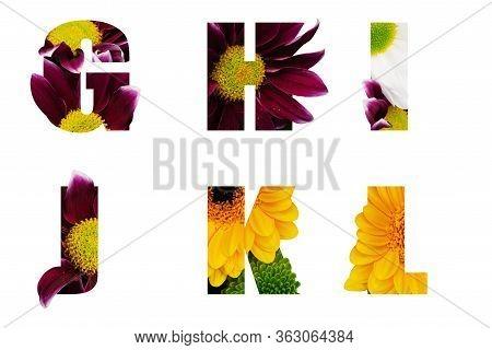 Flower Font Alphabet G,h,i,j,k,l Made Of Real Aliverose Rose Flower Cut Shape Of Letter. Collection