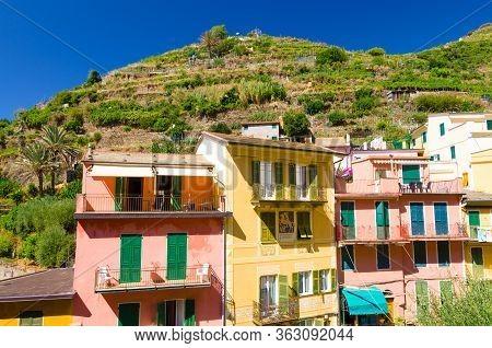 Manarola, Italy, September 9, 2018: Typical Italian Buildings Houses And Green Vineyard Terraces In