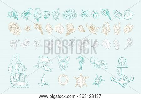 Marine Line Art Vector Icons Of Sea Shells, Anchor And Mollusks. Hand Drawn Icon Set With White Fill