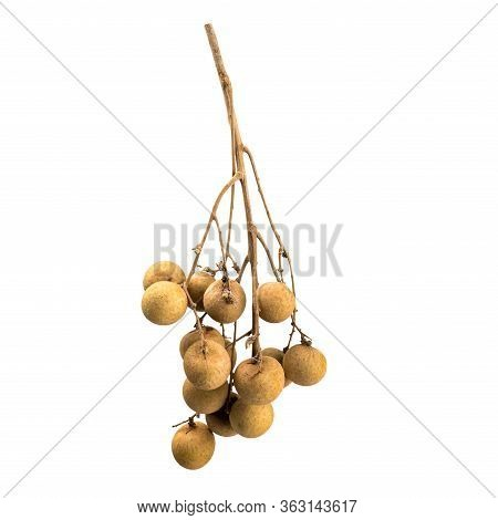 Longan Fruit Isolated On White Background. Sprig With Fruits Longan. Eye Of The Dragon. Source Of Vi