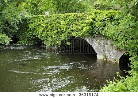 Bridge over River Fergus