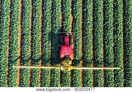 Pesticide Sprayer Tractor Working On A Large Field.