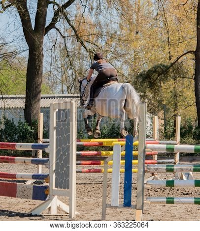 Amateur Show Jumping As A Competitive Sport With Obstacles