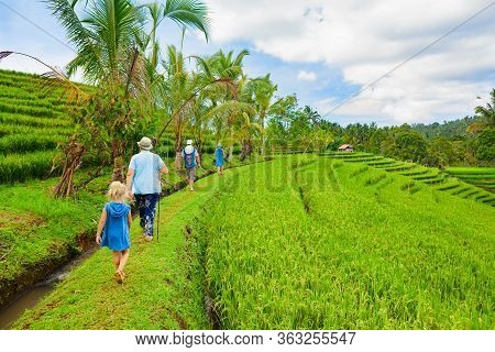 Nature Walk In Green Rice Terrace. Tourist Group Of Retirees, Kids Trekking By Path With Beautiful V