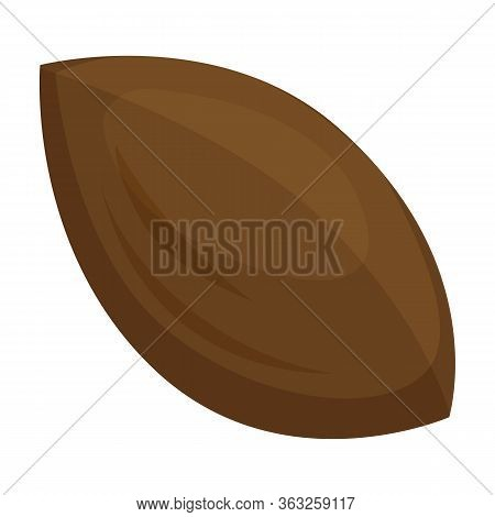 Apricot Kernel Vector Icon.cartoon Vector Icon Isolated On White Background Apricot Kernel.