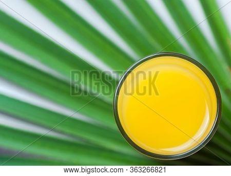 Freshly Pressed Citrus Orange Juice In Glass On Green Palm Leaf Background. Summer Tropical Fruits H
