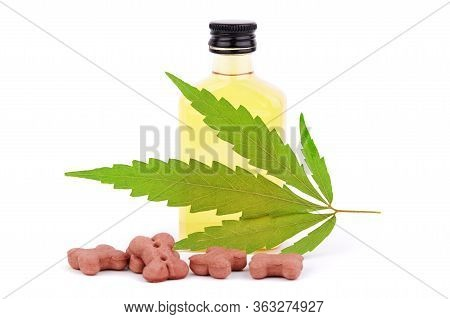Cannabinoid Cbd Oil Is Used As Dietary Supplement. Green Hemp Leaf. Marijuana Products Isolated Whit