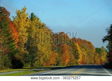 Striking Fall Foliage On The Road Near Ivy Lea, Canada