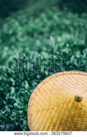 A Beautiful Closeup Of An Asian Conical Hat Against A Tea Plantation Landscape And Bushes, Yangshuo,
