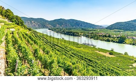 Sunny Day In Wachau Valley. Landscape Of Vineyards And Danube River, Austria