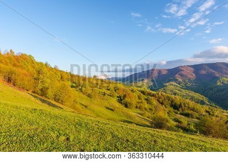 Countryside Scenery In Mountains At Sunset. Beautiful Landscape Of Carpathians With Meadows Rolling