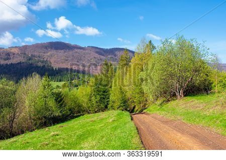 Beautiful Nature Mountain Scenery. Path Through Forest On Grassy Hills In Springtime. Concept Of Out