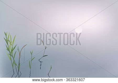 Foggy Morning On A River Or A Lake - Blurry Landscape Background With Bulrush And Copy Space.