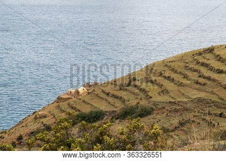 Terraced Fields And Farm Buildings On Slope Of Moon Island At Lake Titicaca In Bolivia