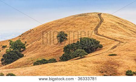 Mount Diablo Hills And Trees