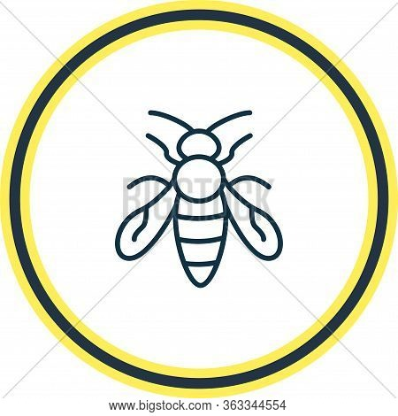 Vector Illustration Of Bee Icon Line. Beautiful Zoology Element Also Can Be Used As Sting Icon Eleme