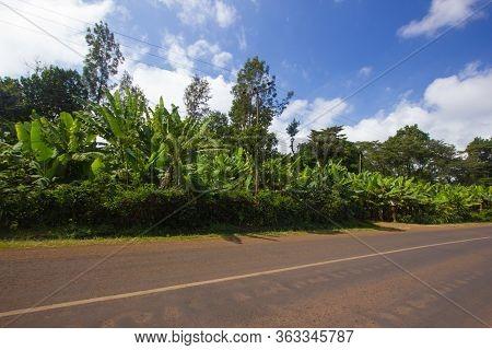 Main Street Through Marangu In Tanzania, Africa