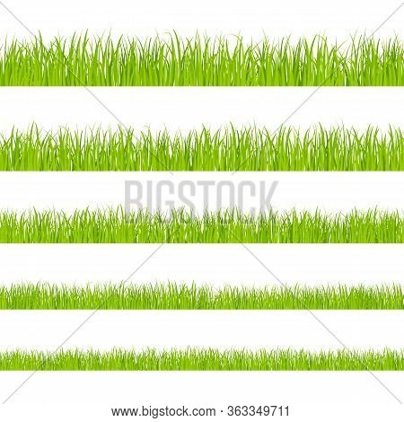 Green Grass. Landscaped Lawns, Meadows Border Clipart. Isolated Organic Pasture Or Garden Objects Sh