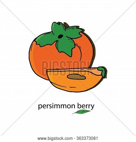 Persimmon Berry In Its Entirety And Its Part. Persimmon Doodle Of Exotic Asian Berry. Fresh Cartoon