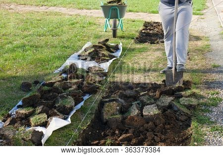 Gardener Digging In A Garden With A Spade. Man Using A Big Shovel For Digging Old Lawn. Gardening In