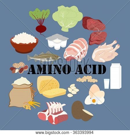 Amino Acid Nutrient Rich Food Vector Illustration