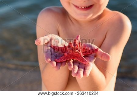 Starfish In Palm. Kid Holds Starfish. Vacation With Children Of Sea.