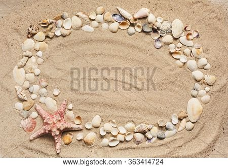 Seashells Summer Background. Lots Of Different Seashells Piled Together