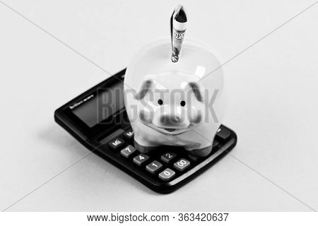 Piggy Bank Pink Pig Stuffed Dollar Banknote And Calculator. Financial Wellbeing. Savings Account. Sa