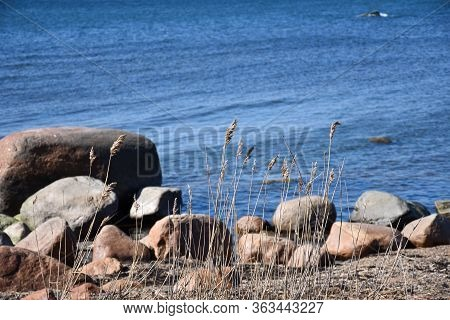 Stony Coastline With Blue Water In Spring Season
