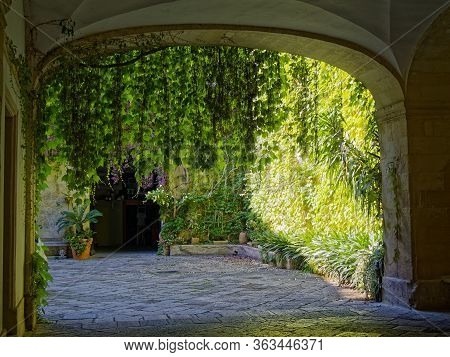 The Green Courtyards Of The Southern Italian Cities
