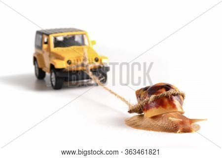 The Concept Of A Sluggish Business. The Snail Achatina Pulls On The Trailer Car