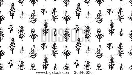 Hand Drawn Grunge Seamless Pattern With Jurassic Horsetails. Black And White Dino Vector Background,