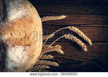 Homebaked Bread. Peasant Bread Loaf And Wheat Spikes On A Wooden Background. Homemade Baking. Toned