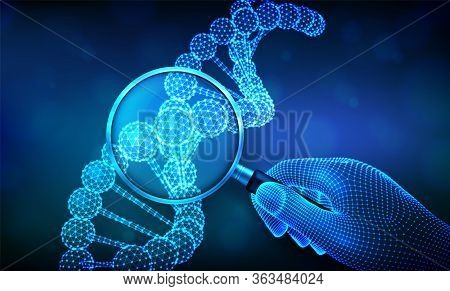 Genetic Engineering Concept With Magnifier In Hand And Dna Sequence. Wireframe Dna Molecules Structu