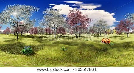 Flowering dogwood trees in orchard in spring time 3d rendering