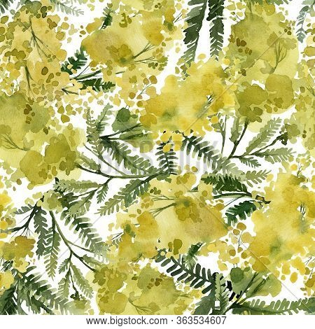 Mimosa, Yellow Plants, Leaves And Flowers, Seamless Pattern, Botanical Illustration, Watercolor