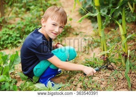 Little Boy Working With Rake In Garden. Child Working In Vegetable Garden. Gardening.