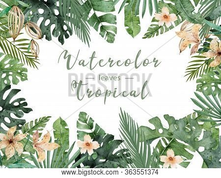 Hand Drawn Watercolor Tropical Banner With Jungle Leaves. Exotic Leaves Illustrations Horizontal Fra