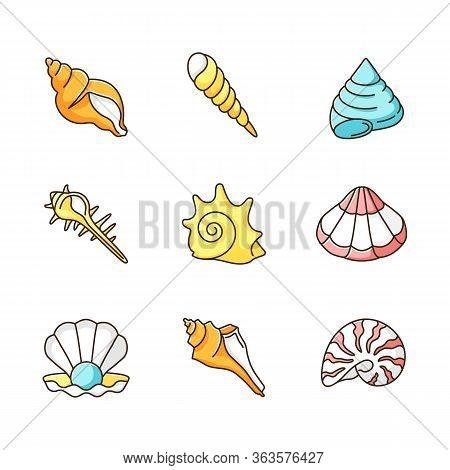 Sea Shells Rgb Color Icons Set. Various Molluscan Shells, Conchology Aquatic Souvenirs, Seashells Co