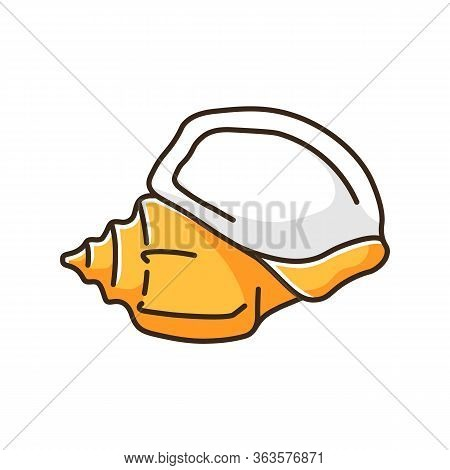 Triton Trumpet Orange Shell Rgb Color Icon. Large Exotic Seashell, Conchology Charonia Tritonis. Emp