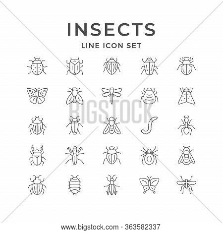 Set Line Icons Of Insects Isolated On White. Dragonfly, Spider, Cockroach, Grasshopper, Mosquito, Ca