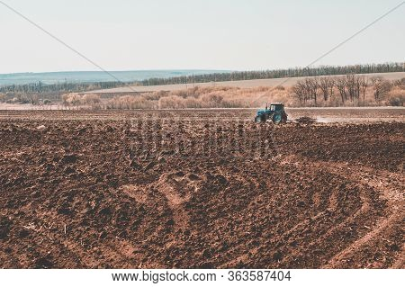 Tractor Plows A Field In The Spring Accompanied By Rooks Tractor .  Time To Plow Concept .