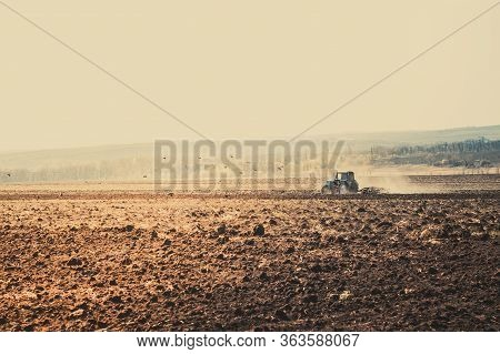 Tractor Plows A Field In The Spring Accompanied By Rooks Tractor . Far View , Time To Plow Concept .