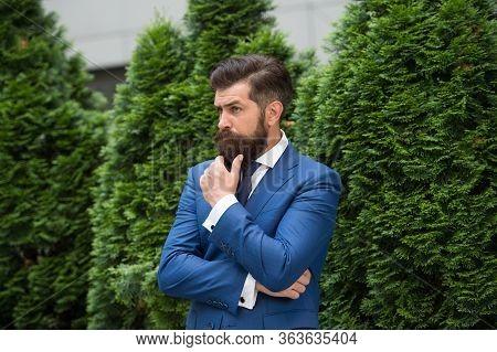 Esthete Detail. Bearded Man In Jacket Near Cypress Tree. Handsome Man Smartly Dressed. Ceo Walk In S