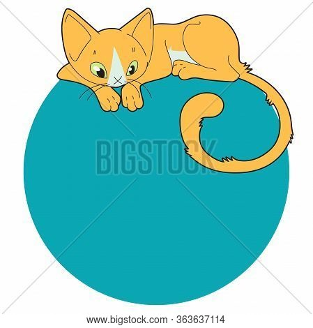 Cartoon Slender Green-eyed Orange Cat With A White Marquise Spot On The Background Of A Colored Circ