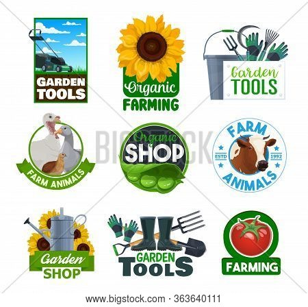 Farming Vector Icons, Gardener Tools Store And Organic Vegetables Harvest Shop. Cattle Farm Animals