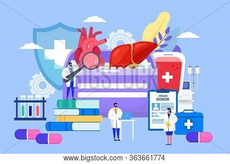 Organ Donor Transplant, Concept Vector Illustration. Hospital Staff Discussing Internal Organ Transp