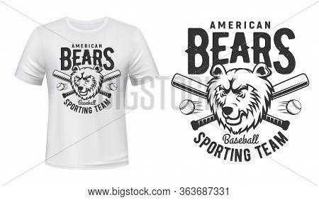 Baseball Team T-shirt Print, American Bears Sport Club Vector Badge. Grizzly Bear, Baseball Balls An